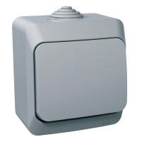 Выключатель одноклавишный, Серый, Cedar Plus WDE000610