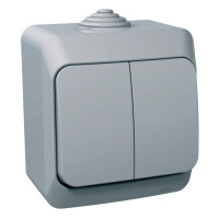 Выключатель двухклавишный, Серый, Cedar Plus WDE000650
